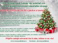 Slavnostní rozsvícení vánočního stromu 1